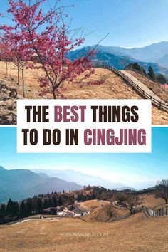 Cingjing Farm, Taiwan: A Detailed 2021 Guide | Hoponworld Taiwan Travel, Asia Travel, Travel Guides, Travel Tips, Great Places, Places To Visit, Buy Grass, Bus Travel, Destin Beach