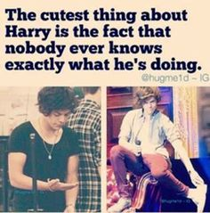 Find images and videos about one direction, and Harry Styles on We Heart It - the app to get lost in what you love. One Direction Humor, One Direction Pictures, I Love One Direction, Liam Payne, Niall Horan, Louis Tomlinson, Style Zayn Malik, Florian David Fitz, Harry Styles Memes