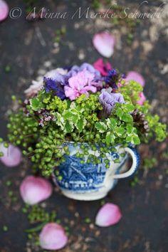 Flower Shop: Floral arrangements
