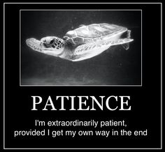 INTJ - Patience. Which I usually do, because it's usually the right way. And if it's not, then I would rather the right way.
