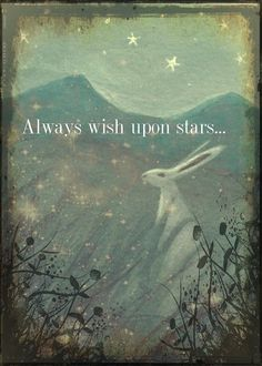 Always wish upon stars!