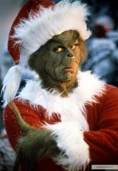 How The Grinch Stole Christmas Images Grinch Party, O Grinch, Grinch Who Stole Christmas, Christmas Mood, Christmas Movies, Christmas Photos, Christmas Humor, Baby Grinch, Grinch Stuff
