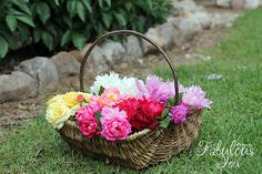 fresh cut flowers from the garden
