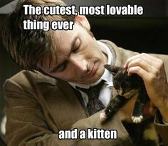 Cutest thing ever and a kitten - David Tennant - Ten (10) - Doctor Who