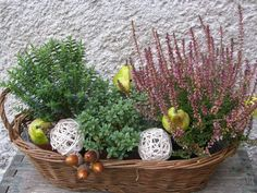 Flower Centerpieces, Flower Decorations, Flower Arrangements, Seasonal Decor, Fall Decor, Balcony Flowers, Outdoor Christmas Decorations, Garden Design, Diy And Crafts