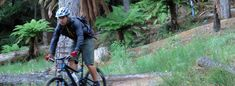 Te Ara Ahi(thermal by bike) trail offers a adventure through a thermal wonderland of steaming vents, bubbling mud pools and spectacular geysers. New Zealand Travel, Bike Trails, Mud, Pools, Exploring, Wonderland, Cycling, Bicycle, Journey