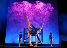clubs Dance Pictures, Calisthenics, Gymnastics, Dancing, Club, Concert, Board, Fitness, Dance