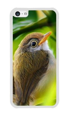 Cunghe Art Custom Designed White TPU Soft Phone Cover Case For iPhone 5C With Bird Branch Grass Phone Case https://www.amazon.com/Cunghe-Art-Custom-Designed-iPhone/dp/B0166OI8ZW/ref=sr_1_8142?s=wireless&srs=13614167011&ie=UTF8&qid=1469003376&sr=1-8142&keywords=iphone+5c https://www.amazon.com/s/ref=sr_pg_340?srs=13614167011&rh=n%3A2335752011%2Cn%3A%212335753011%2Cn%3A2407760011%2Ck%3Aiphone+5c&page=340&keywords=iphone+5c&ie=UTF8&qid=1468999370&lo=none
