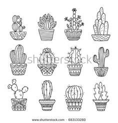 stock-photo-hand-drawn-sketch-cactus-set-flora-exotic-illustration-plants-nature-elements-683133280.jpg