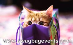#SwagBagEvents  www.swagbagevents.com Swag, Events, Instagram