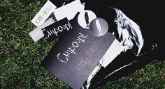cdf2373284a Chipoodl - российский бренд одежды от Ивана Макаревича