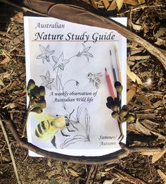 Introducing the Australian Nature Study Guide: A weekly observation of Australian wild life. I'm so excited it's almost done. Launching January 2018.  #naturestudy #australiannaturestudy #australianhomeschool #australianature