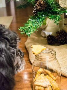 Homemade-Holiday-Dog-Treats10
