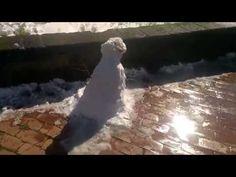 Neve a Roma, ore 13:15, 26 febbraio 2018 Emanuele Carioti Carioti Distam...