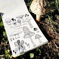 Mushroom love  #doodle #sketch #dailydoodle #drawing #superdrawing #lineweek #nature #mushrooms #zemun #beograd #urbisfloriana Doodle Sketch, Stuffed Mushrooms, Playing Cards, University, Doodles, Love, Drawings, Nature, Amor