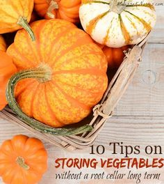 Learn these 10 tips to store vegetables without a root cellar long term. Tells how to cure, temps, and storing time for 7 vegetables using root cellar techniques when you don't have a garage or root cellar. Great way to save money and build up food storage!