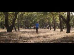 Odemira Pure Alentejo - (Odemira, Alentejo Singular) - YouTube