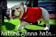 just like us dawgs hate gators, yellow jackets, and tigers! go dawgs!