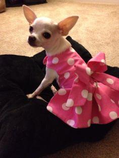 Cute dress I would like to make for Ali/Orignial made by Sabrina Kivett
