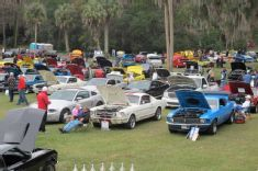 Shake the Winter Blues at NPD's 22nd Annual Mustang Roundup!