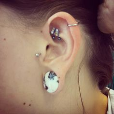"""My tragus, double rook and helix. My ears are at 3/4"""". Debating on a snug or just leaving as is. I can't wait to get started on my other ear!"""