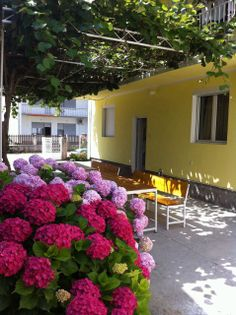 I rent rooms and apartments Pericic in the lower part of Sutomore, under the main road, close to the beach. Prices in pre season are 5 and 6 EUR per person in the room, 6 and 7 EUR in apartments.  http://www.holidaysaccommodations.com/property/926/overview/apartments-pericic #travel #holiday #montenegro