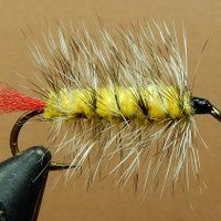 photo Yellow Chenille-Grizzly Hackle_zpskdyesrey.jpg
