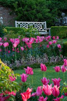 Mariette Tulips and Lutyens Bench by Clive Nichols, Pashley Manor Gardens, East Sussex, www.dayvisits.co.uk