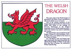 are welsh dragons real? - Google Search