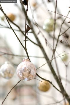 She says she gravitated toward the pearl, bronze, and pink painted glass ornaments from the boxed set of 24 in Kasler's collection.