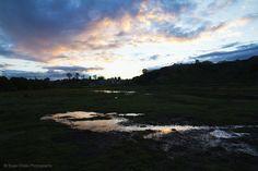 Sunset   © Elyse Childs Photography