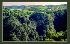 Puerto Rico Mountains and Rivers | Puerto Rico Nature Gallery - Ed Hoppe Photography