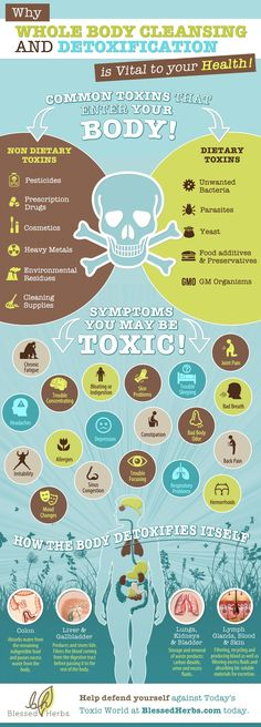 [INFOGRAPHIC] Why Whole Body Cleansing and Detoxification is Vital to Your Health! Identify common toxins that enter your body and symptoms you may be toxic + how the body detoxifies itself. Whole Body Cleanse, Body Detox Cleanse, Liver Detox, Detox Your Body, Health Cleanse, Toxic Cleanse, Colon Detox, Liver Cleanse, Juice Cleanse