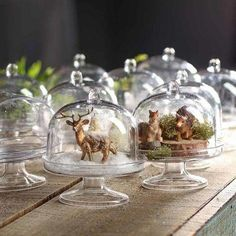 Miniature Clear Oval Cloches - New Items : Miniature Acrylic Oval Cloches Christmas Projects, Holiday Crafts, Christmas Time, Vintage Christmas, Xmas, Cloche Decor, Factory Direct Crafts, Fairy Garden Supplies, Gardening Supplies