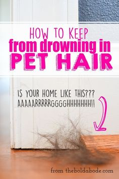 Drowning in pet hair? Check out these tips to cut down on the piles of hair. Are you drowning in pet hair? Use these tips to keep the pet hair at bay! Cleaning Tips