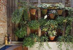 plantas para jardim vertical - Buscar con Google