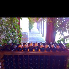 Gainey Vineyards in Santa Barbara, CA #rosecoastrealty #andrewrose #realestate www.rosecoastrealty.com