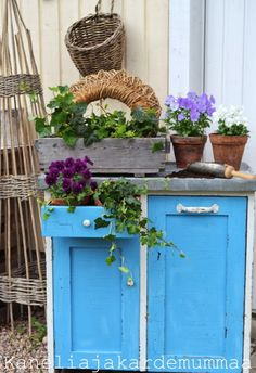 An old kitchen cupboard changed into a planting table