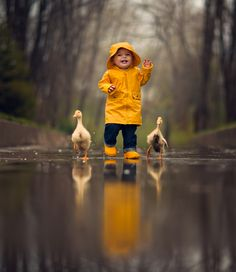 Cute toddler in yellow raincoat with ducks