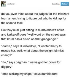 "Which leaves Harry…well, on his own. It's lonely work saving the entire wizarding community, but somebody's got to do it. | 19 Tumblr Posts About The Most Important Couples In ""Harry Potter"""
