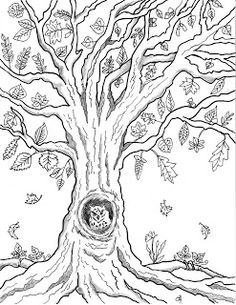 free fall coloring pages tree autumn printable easy
