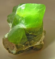 Chrysolite / Peridot: adorning the foundation (Rev. Green Gemstones, Minerals And Gemstones, Rocks And Minerals, Natural Gemstones, Beautiful Rocks, Mineral Stone, Rocks And Gems, Stones And Crystals, Gem Stones