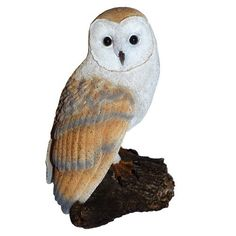 Michael Carr Designs 80050 Barn Owl on Log Outdoor Decor by Michael Carr Designs. $22.99. Barn owl on log is part of the raptor collection. Each one is so interesting and deep. Owls have such great color and beautiful eyes. This is an extension to our feathered friends line. We think you will find the details on these creatures extraordinary. Barn Owl on Log is part of the Raptor Collection. This is an e by tension to our Feathered Friends line. Owls have such great color and...