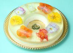 「花のババロア havaro」から、人気絵本シリーズ「くまのがっこう」コラボスイーツ「ジャッキーの花のババロア」が販売中!