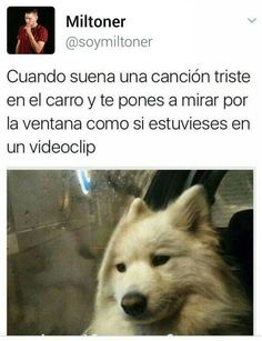 Yo: Hello from the other side Mexican Memes, Funny Spanish Memes, Wtf Funny, Best Memes, Funny Images, True Stories, Laughter, Funny Quotes, Anime
