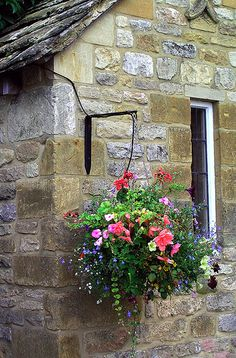hanging basket against a stone wall