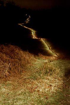 Tim Knowles, Nightwalk - Knole Park, Sevenoaks #3