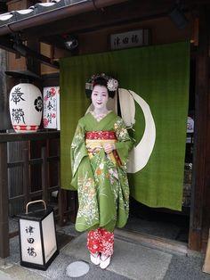 Maiko wearing Green hikizuri during July Japanese Geisha, Japanese Beauty, Japanese Kimono, Rare Clothing, Green Kimono, Kimono Japan, Japanese Costume, Turning Japanese, Japanese Aesthetic