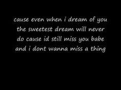 i dont wanna miss a thing (lyrics)