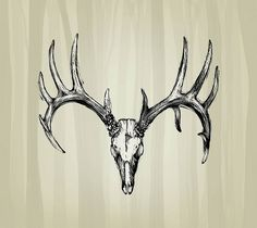 deer+skull+tattoo+pics | ... Deer Skull Tattoos Submited Images Pic 2 Fly Tattoo Design #12388